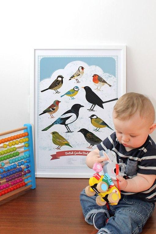 bird_poster3
