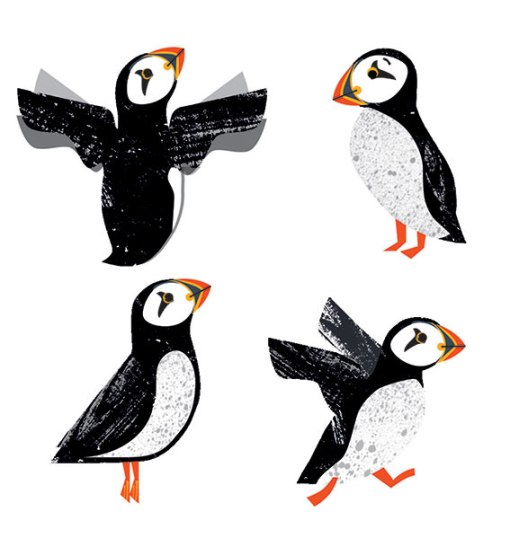 Puffin_prints