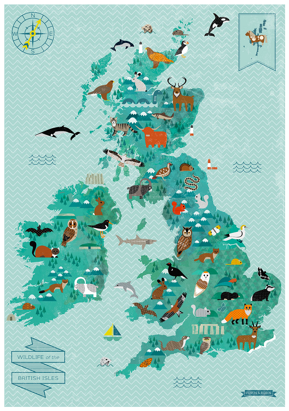 Wildlife of the British Isles, Illustrated Map   Kate McLelland